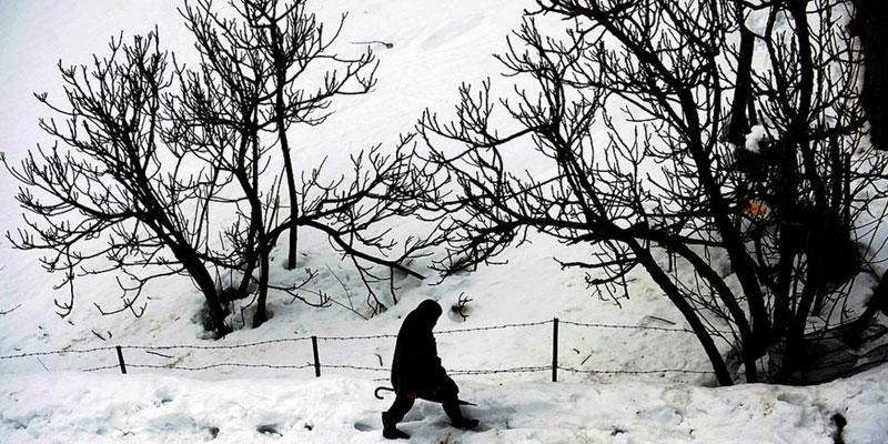القصرين: بداية تساقط الثلوج بهذه المناطق