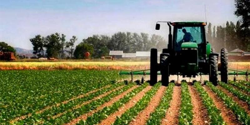 Approbation de 1266 opérations d'investissement agricole à Sidi Bouzid