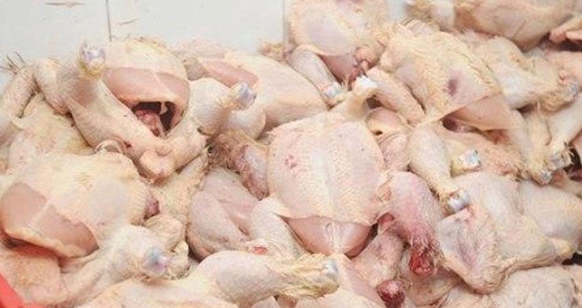 اريانة :ضبط مذبح عشوائي للدواجن وحجز كميات من الدجاج الفاسد