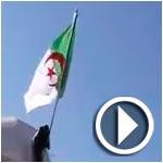 عاجل : اختراق سياج السفارة الجزائرية بالدار البيضاء وانزال العلم الجزائري وتمزيقه