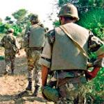 وحدات الجيش الجزائري تشتبك مع مجموعة إرهابية تسللت عبر جبل الشعانبي
