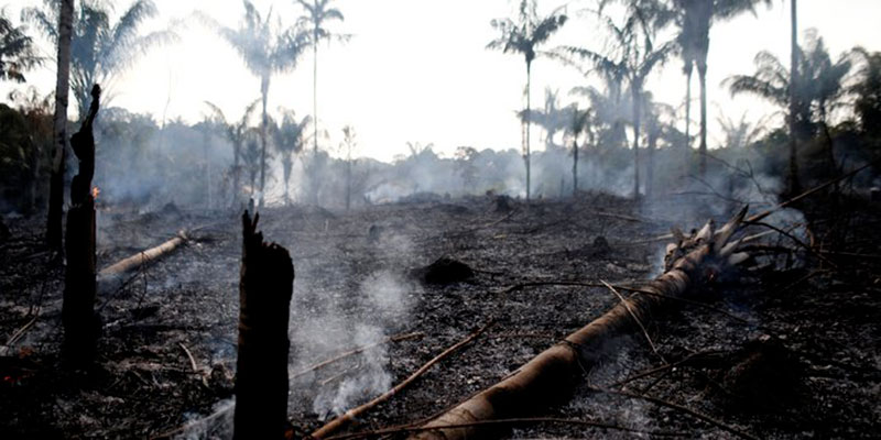 Incendies catastrophiques en Amazonie