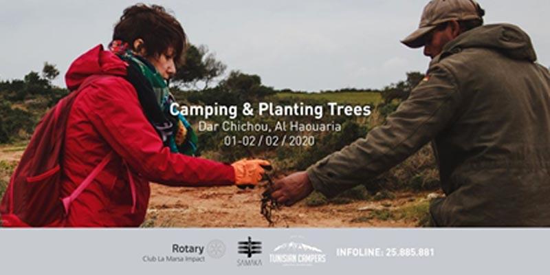 Planter des Arbres pour compenser son empreinte carbone, une prise de conscience des jeunes Tunisiens
