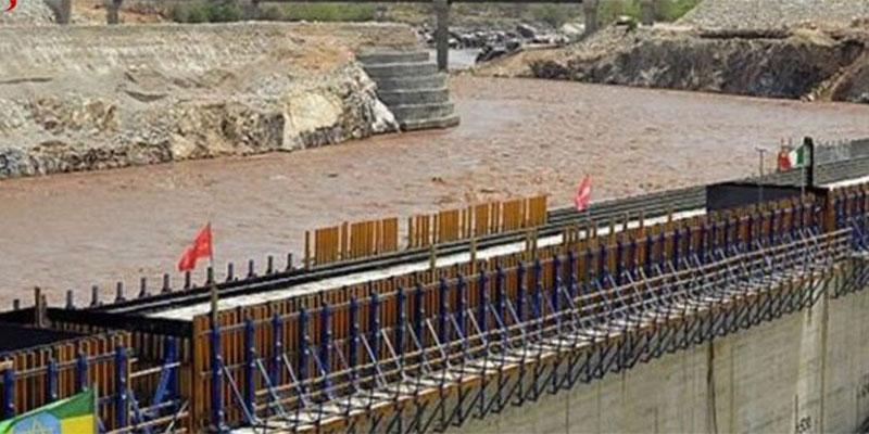 وزير خارجية مصر يوجه تحذيرا لإثيوبيا بشأن سد النهضة