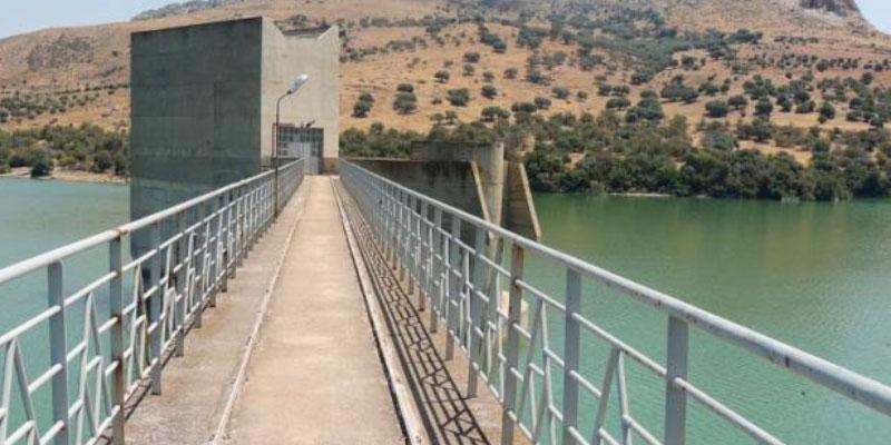 Plus de 6 millions de m3 de sédiments seront accumulés dans le barrage de Sidi Salem<