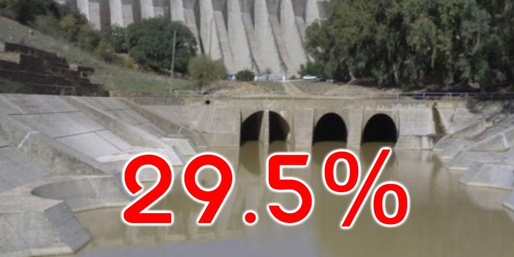 حتى اليوم: نسبة امتلاء السدود بلغت 29.5%