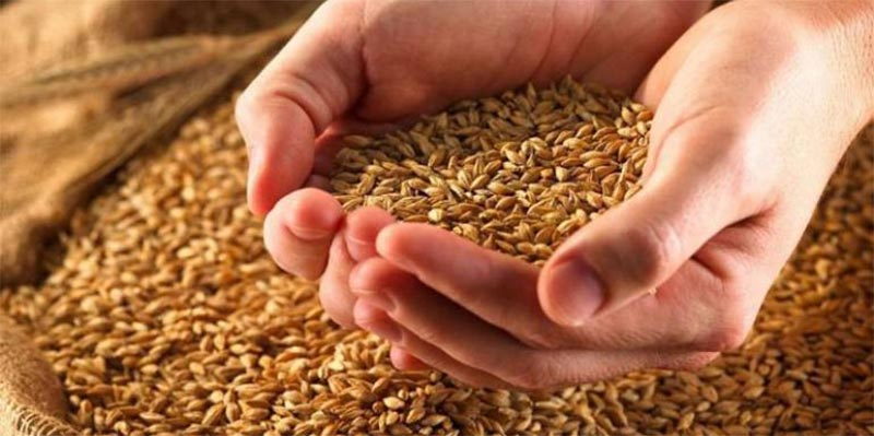 Augmentation du prix d'achat des céréales auprès des producteurs