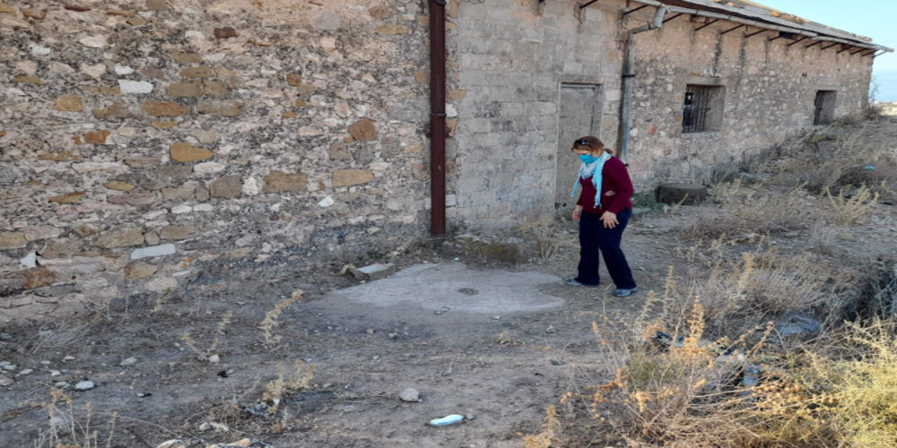 اكتشاف أرضية فسيفسائية في برج العامري