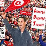 Les bouzidois : La révolution doit être célébrée le 17 décembre ... et non pas le 14 janvier !