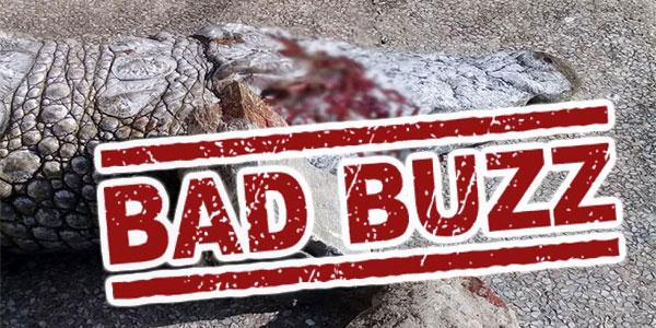 De l'Angleterre à l'Argentine, tous les médias parlent du massacre du crocodile