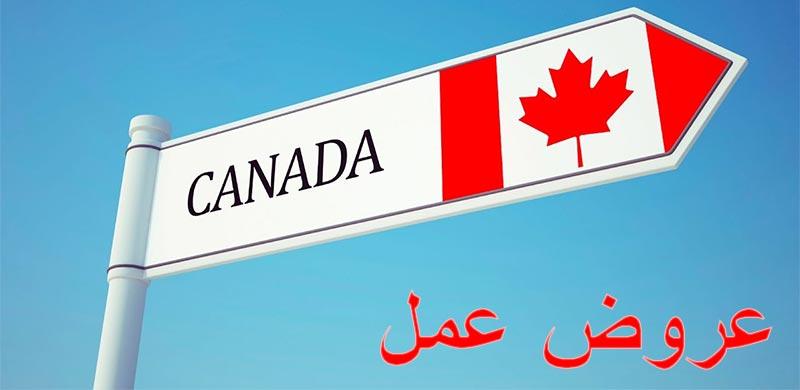 كندا: فرص عمل بالكيباك للتونسيين