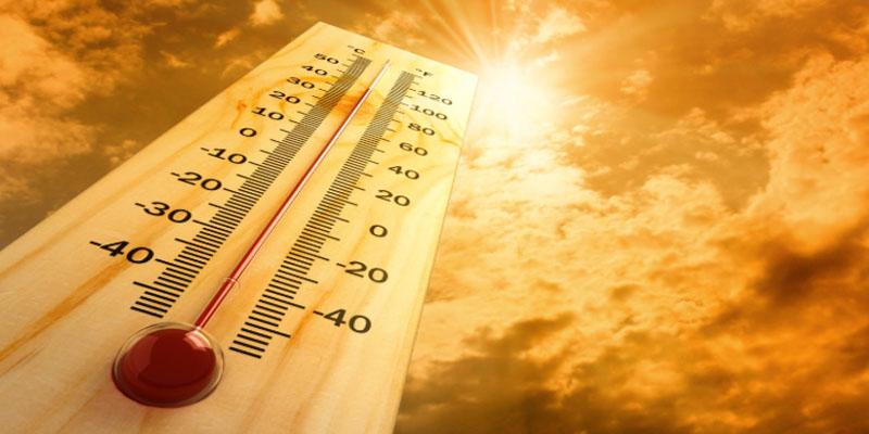 خلال شهر جويلية: تونس تشهد درجات حرارة ستتجاوز المعدلات الموسمية بعشر درجات