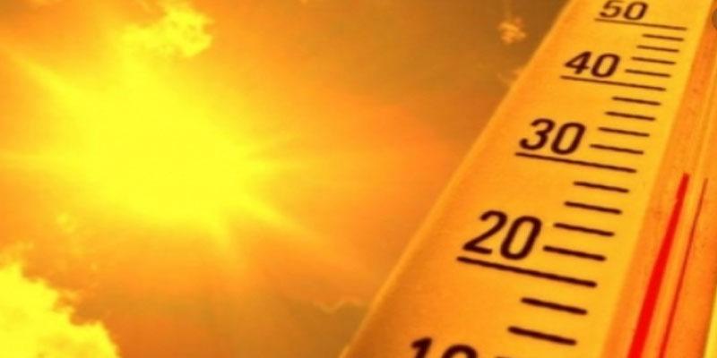 المنظمة العالمية للأرصاد الجوية:2019 ثاني أشد الأعوام حرارة في تاريخ رصد درجات الحرارة