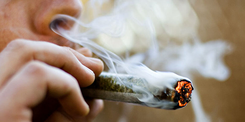 La consommation de cannabis multipliée par quatre