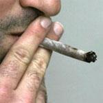 Hier, arrestation de 4 jeunes récidivistes avec 6 kilos de cannabis