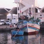 Chebba : Des pêcheurs bloquent l'accès au port pour protester contre la pêche à la traîne