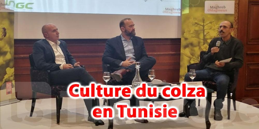 En vidéo: La Tunisie ambitionne d'atteindre une surface cultivée de 150.000 hectares de colza