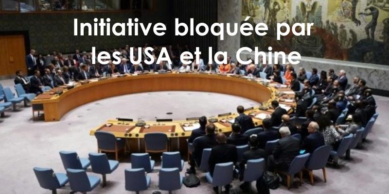 Un projet de résolution franco-tunisien bloqué à l'ONU