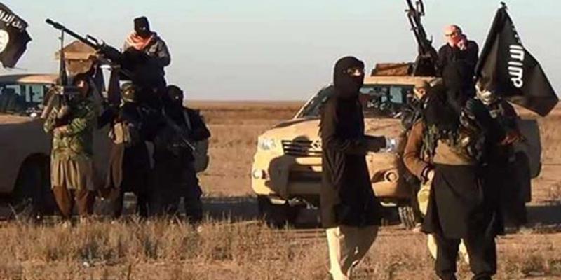 ألف امرأة في صفوف داعش في ليبيا بينهن 300 تونسية