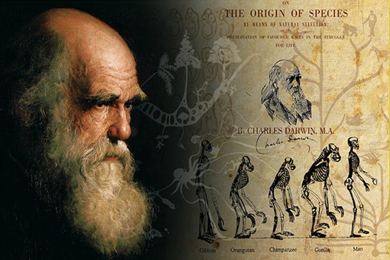 وزير التعليم: نظرية داروين أسطورة لا نقبلها