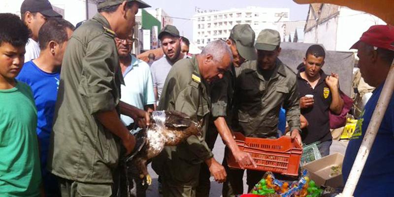 En photos : Descente de la Brigade des Forêts à Moncef Bey