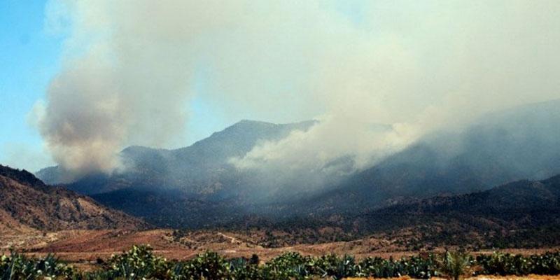 Un grand incendie ravage le Djebel Chaambi