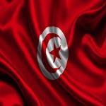 Joyeux Anniversaire Cher Drapeau De La Tunisie