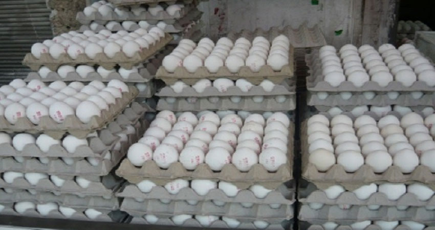 الكاف :حجز 6 آلاف بيضة