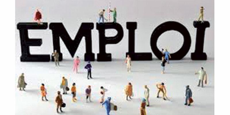 Détails sur les programmes pour la création de 10 milles offres d'emploi supplémentaires entre 2019 et 2020
