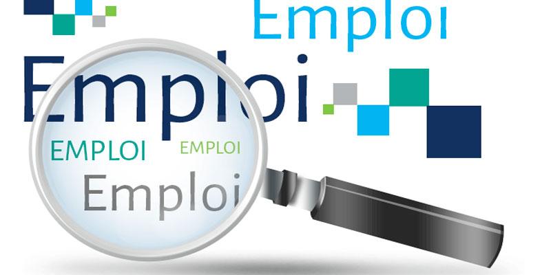 Amélioration relative des indicateurs de l'emploi à Kébili en 2017