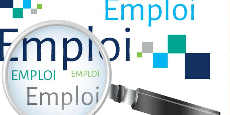 Croissance de 15% des indicateurs d'emploi des cadres à Nabeul