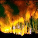حريق بجبل بوقرنين