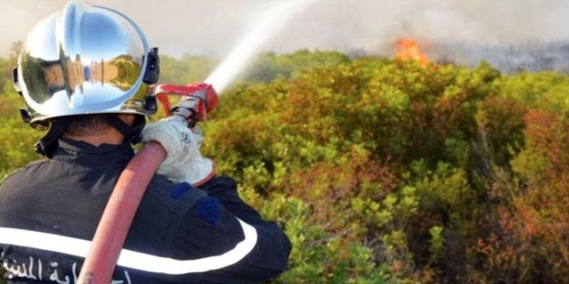 القصرين: اندلاع حريق في المنطقة العسكرية العازلة