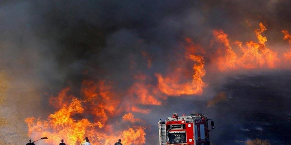 وزيرا الفلاحة والداخلية يبحثان الحلول الكفيلة بتلافي الحرائق هذه الصائفة