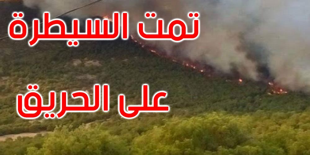 بنزرت: حريق بجبل في سجنان يأتي على حوالي 04 هكتارات من الأشجار
