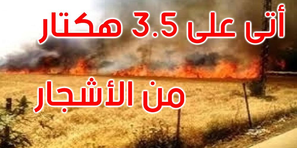سليانة: حريق يأتي على أكثر من 3 هكتارات بجبل فيض الهاني