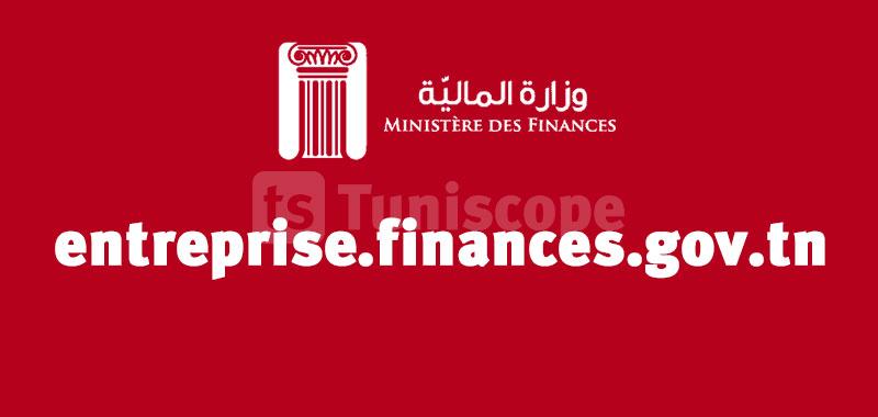 entreprise.finances.gov.tn la Plateforme digitale des entreprises sinistrèes