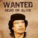 Le Conseil national de transition a promis une amnistie à quiconque arrêtera ou tuera Mouammar Kadhafi