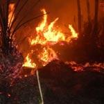 اندلاع حريق قرب الثكنة العسكرية بجندوبة