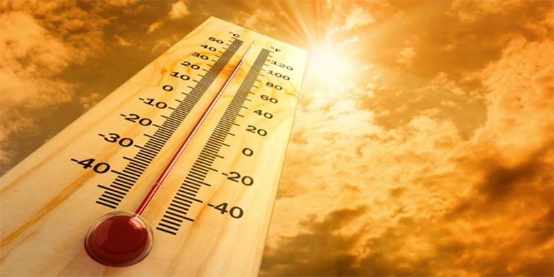 العلماء يحذرون من خطر ارتفاع الحرارة على الدماغ