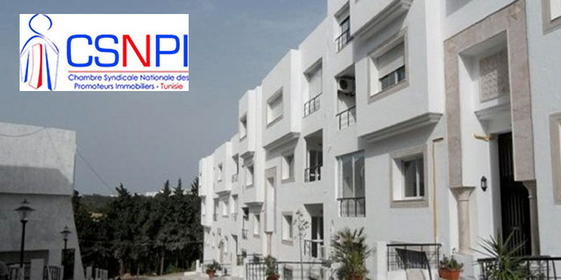 Le chiffre d'affaires du secteur immobilier est bien modeste, dénonce le président de la CSNPI