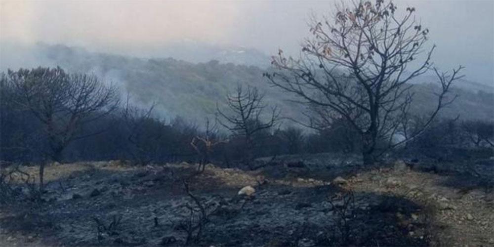 إخماد حريق جبل الناظور للمرة الثالثة على التوالي