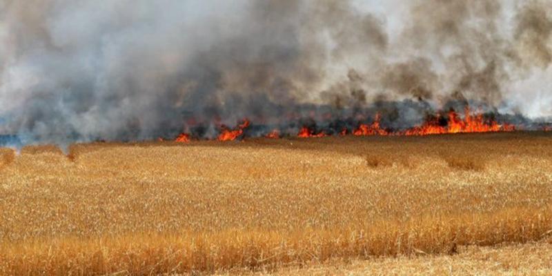 Une enquête pour dévoiler les causes d'incendies douteux à Majaz Al Bab