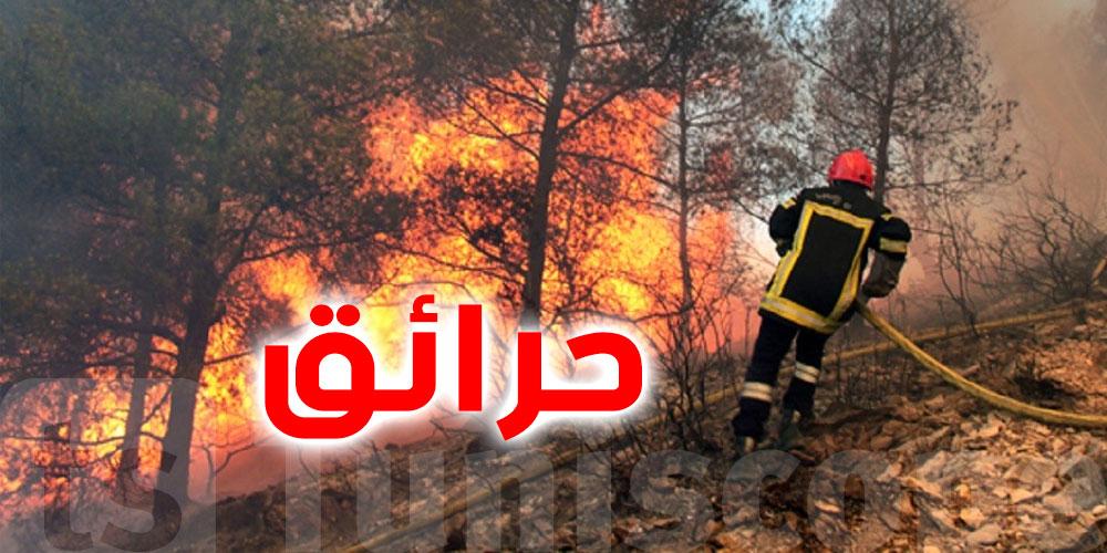 القصرين ''حرائق تأتي على حوالي 70 هكتارا بمحيط حقل الدولاب''