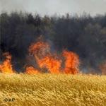 20 hectares de blé ravagés par un incendie
