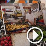 Khadh'art : Expo-photo au marché El Kallaline