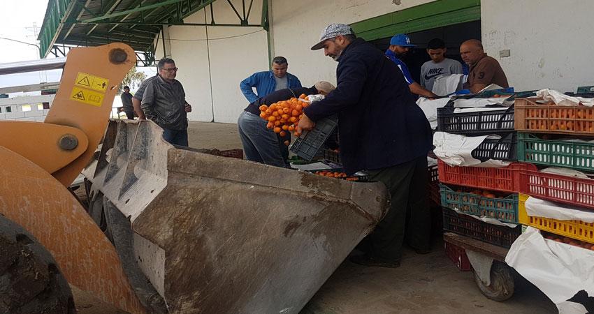 صور..اتلاف اطنان من المشمش الرفيع بسوق الجملة بالقيروان