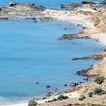 Révolution Electro : 30000 participants dont 5000 Européens sont attendus sur la plage de Korbous