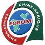 L'Europe critique, la Chine se défend, et l'Afrique trouve son compte
