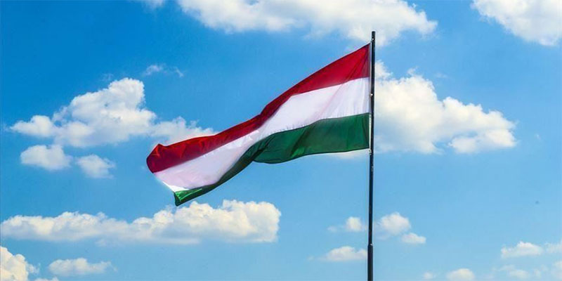المجر، ارتفاع قتلى العبارة الغارقة بـ''الدانوب '' إلى 17